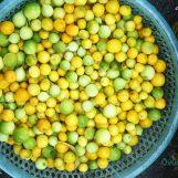 Các món ăn ngon và đặc sản của Mẫu Sơn