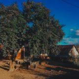 Các địa điểm du lịch ở Đắk Lắk