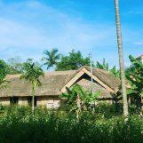 Các địa điểm du lịch ở Nghệ An